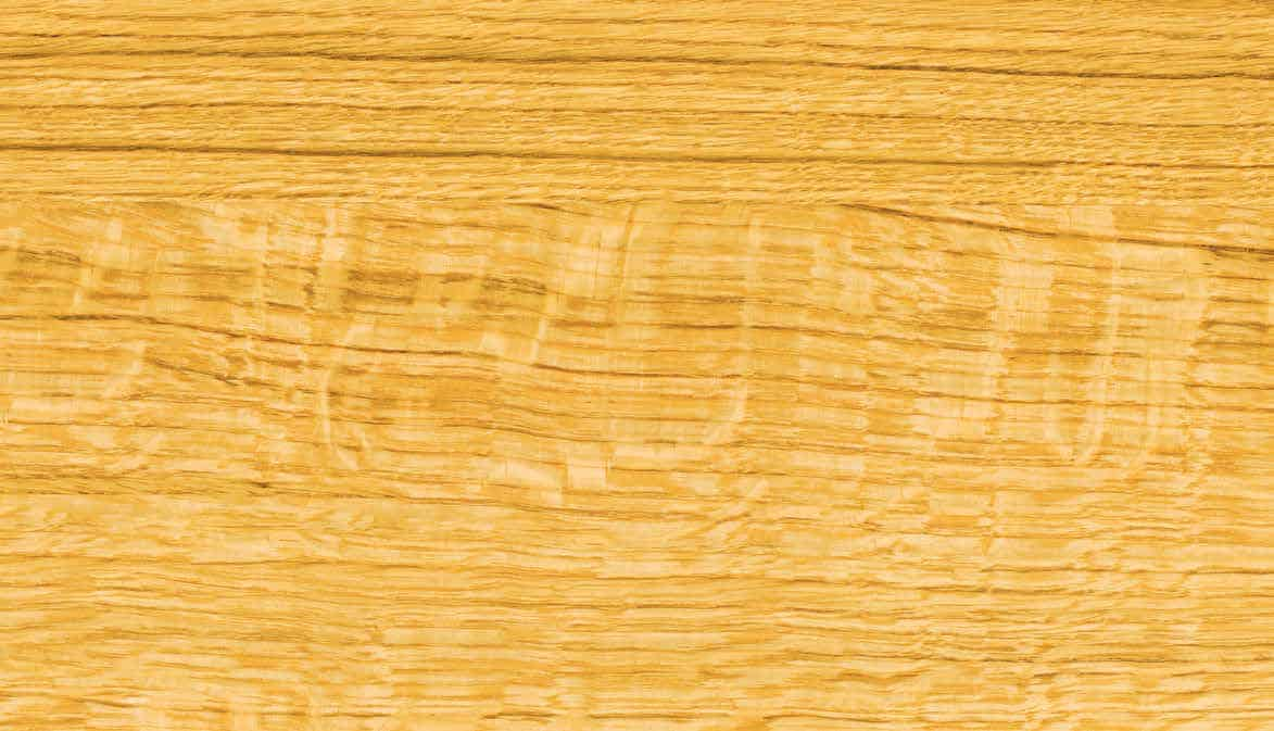 Hormann Duragrain Nature Oak